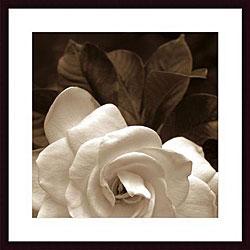 Rebecca Swanson 'Gardenia Garden' Framed Art