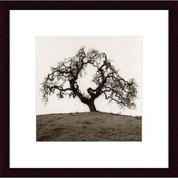 Alan Blaustein 'Hillside Oak Tree' Wood Framed Black and White Art Print