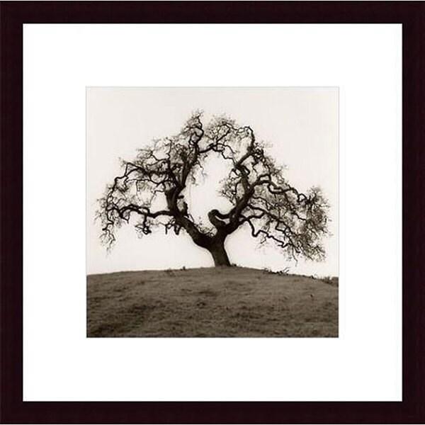 Shop Alan Blaustein Hillside Oak Tree Wood Framed Black And White