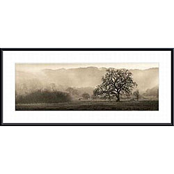 Alan Blaustein 'Meadow Oak Tree' Metal Framed Art