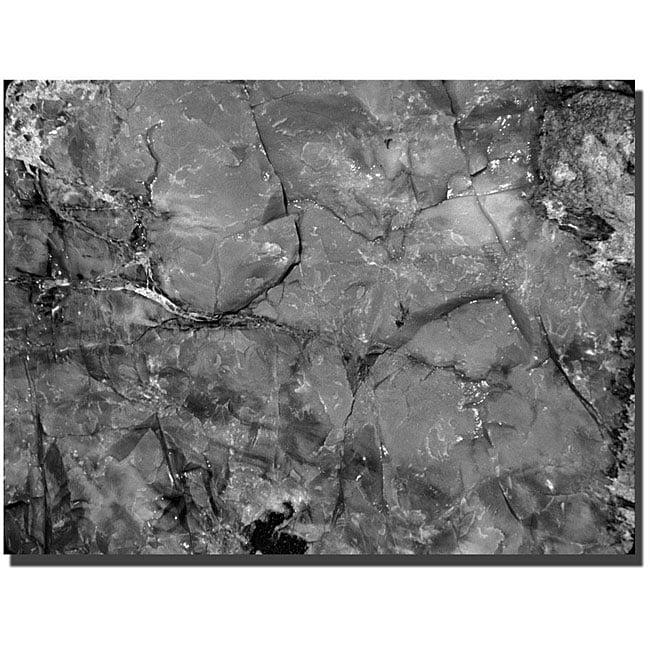 Kurt Shaffer 'Petrified Abstract' Gallery-wrapped Art