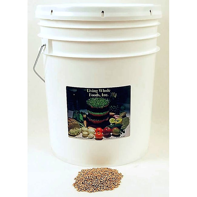 Living Whole Foods 35-pound Bucket of Organic Kamut
