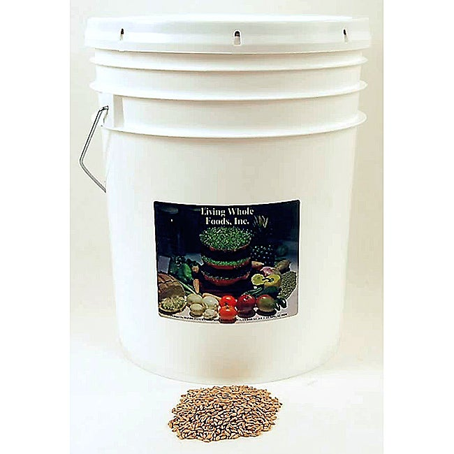 Living Whole Foods Organic Spelt Grain Seeds (35-pound Bucket)