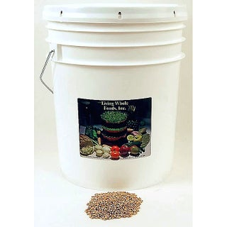 Living Whole Foods 35-pound Bucket of Organic Wheat Grain Seed