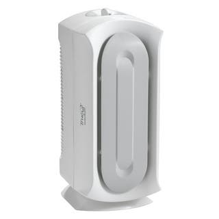Hamilton Beach True Air 04383 Air Purifier|https://ak1.ostkcdn.com/images/products/4448694/Hamilton-Beach-True-Air-04383-Air-Purifier-P12402643.jpg?impolicy=medium