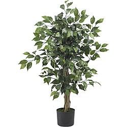 Ficus 3-foot Silk Tree