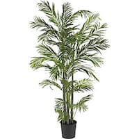 Areca 5-foot Silk Palm Tree