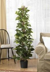 Pothos 63-inch Climbing Silk Plant - Thumbnail 1