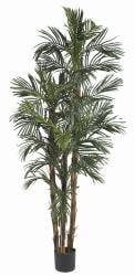 Robellini 6-foott Palm Silk Tree - Thumbnail 2