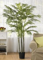 Areca 6-foot Palm Silk Tree - Thumbnail 1