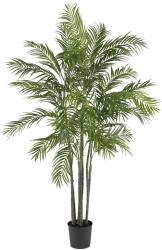Areca 6-foot Palm Silk Tree - Thumbnail 2