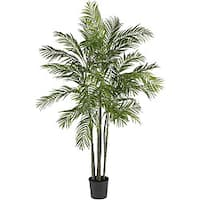 Areca 6-foot Palm Silk Tree