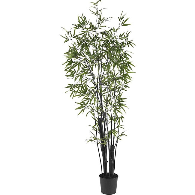 Black 6-foot Bamboo Silk Tree (2 Thick Trunks)