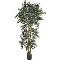 Green Ash 6-foot Silk Tree