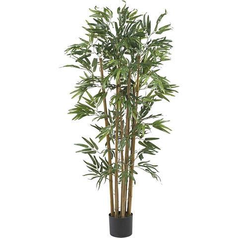 Multi Bambusa 4-foot Bamboo Silk Tree