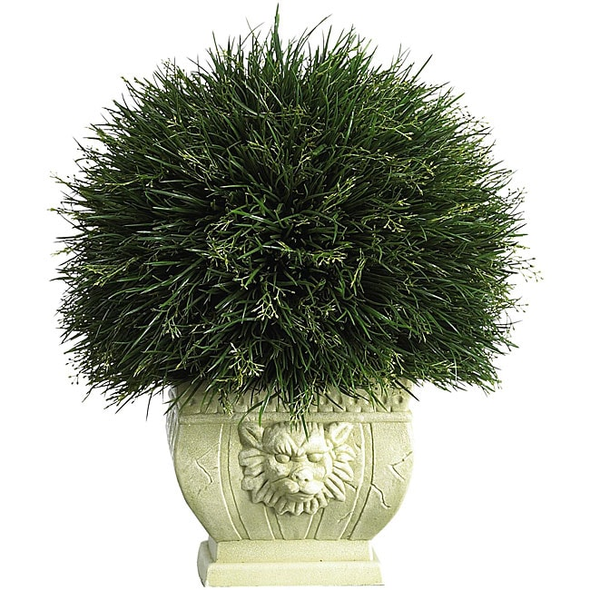 Potted Acorus Grass with White Vase - Thumbnail 0