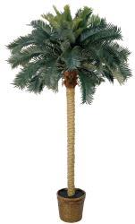 Sago Palm 6-foot Silk Tree - Thumbnail 2