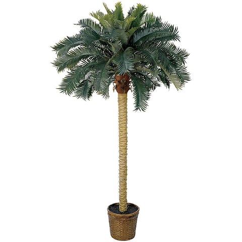 Sago Palm 6-foot Silk Tree