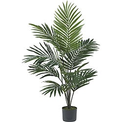Kentia Palm 5-foot Silk Tree