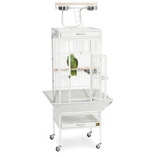 Prevue Pet Products Wrought Iron Select Bird Cage 3151|https://ak1.ostkcdn.com/images/products/4565041/P12503384.jpg?impolicy=medium