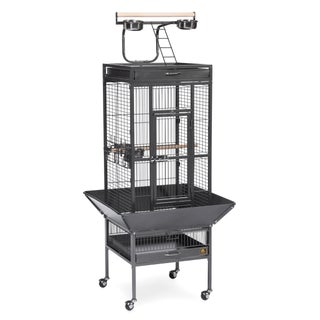 Prevue Pet Products 3151 Wrought Iron Select Bird Cage (Option: Prevue 3151 Black Cage for cockatiel or small parrot)