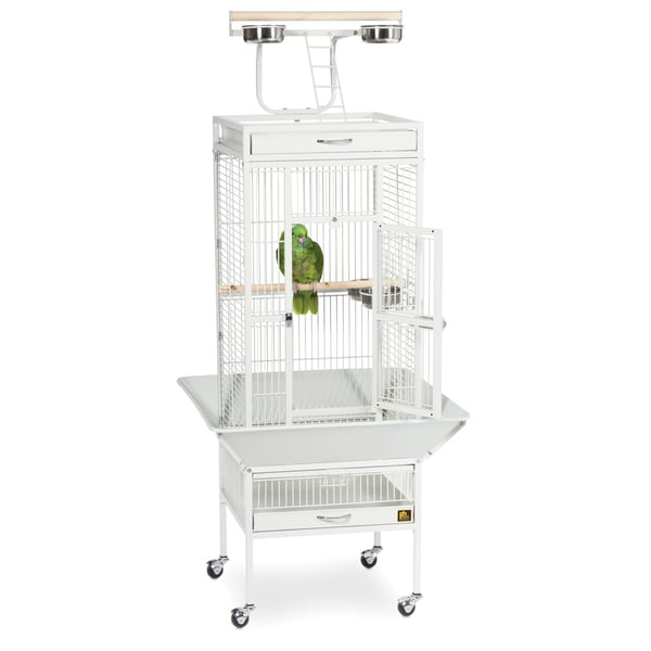 e564e23175d5 Shop Prevue Pet Products Wrought Iron Select Bird Cage 3151 - Free ...