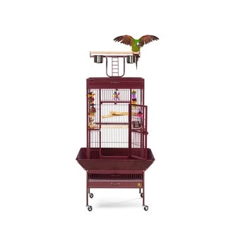 Prevue Pet Products Wrought Iron Select Bird Cage 3152