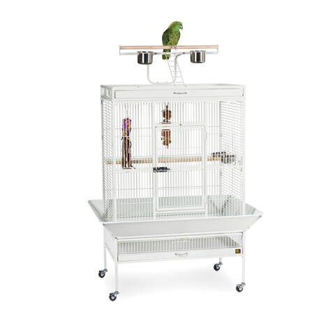 Prevue Pet Products 3154 Wrought Iron Select Bird Cage