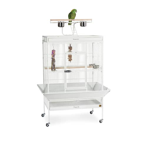 Prevue Pet Products Wrought Iron Select Bird Cage 3154
