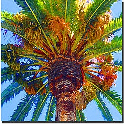 Amy Vangsgard 'Palm Tree Looking Up' Gallery-wrapped Canvas Art