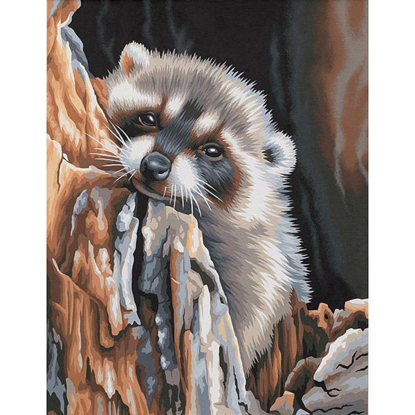 Dimensions 'Daydreaming Raccoon' Paint By Number Kit (11 x 14)