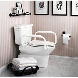 Moen Toilet Safety Rails