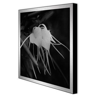 Gallery Direct Michael Joseph 'Orchid Hearts' Framed Metal Art