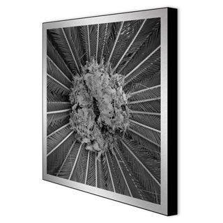 Gallery Direct Michael Joseph 'Palm Pom' Framed Metal Art