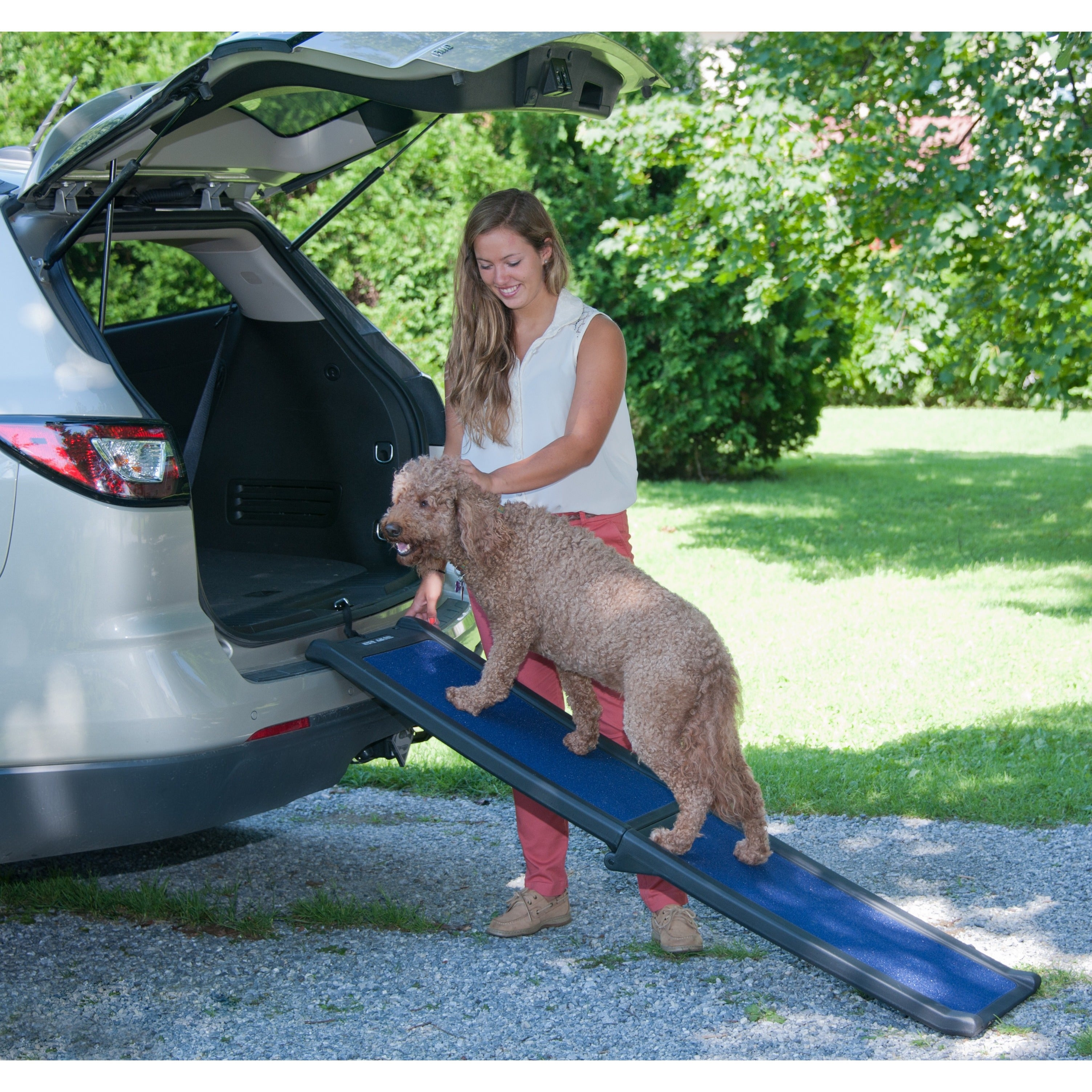 Pet Gear Full Length Bi-fold Pet Ramp, Blue