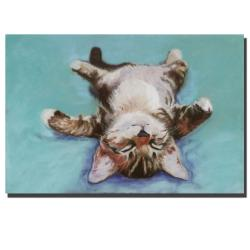 Pat Saunders 'Little Napper' Gallery-wrapped Canvas Art