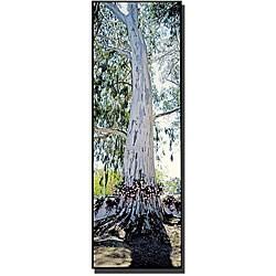 Preston 'Spain Tree' Gallery-wrapped Canvas Art