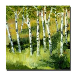 Michelle Calkins 'Birch Trees' Gallery-wrapped Canvas Art