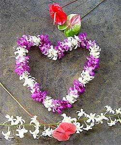 Big Island Single Dendrobium Lei (100 Blossoms)