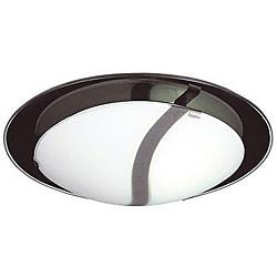 Energy Star 2-light Frosted Glass Flush Mount Light Fixture