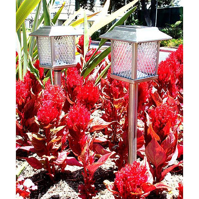 Stainless Steel Square Solar Powered LED Lights (Set of 6)