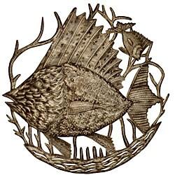 Metal 'Big Fish' Oil Drum Art (Haiti)