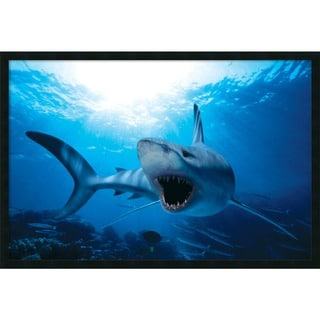 Framed Art Print Shark 38 x 26-inch