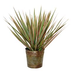 Thumbnail 3, Bi-color Dracaena Marginata Live Plant in Marble-colored Planter. Changes active main hero.