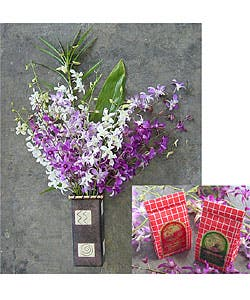 Hawaii Orchids and Big Island Cookie Gift Pack|https://ak1.ostkcdn.com/images/products/490561/Hawaii-Orchids-and-Big-Island-Cookie-Gift-Pack-LP931157.jpg?impolicy=medium