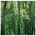 Handmade Bamboo Grove Canvas Wall Art (China)