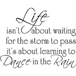 Design on Style 'Life Dance Rain' Vinyl Wall Art Quote