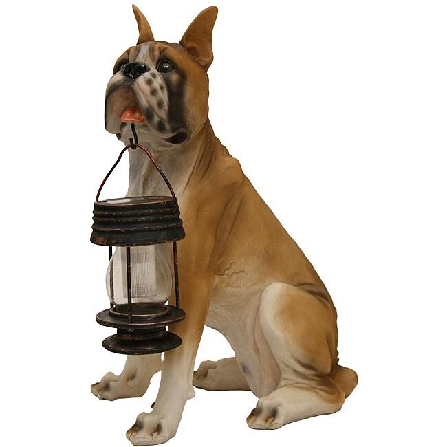 Shop Tricod Boxer Dog With Lantern Solar Light Free