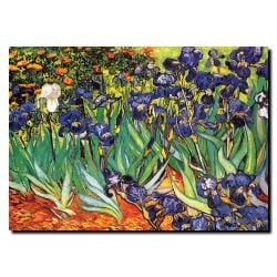 Vincent Van Gogh 'Irises, Saint-Remy' Canvas Art
