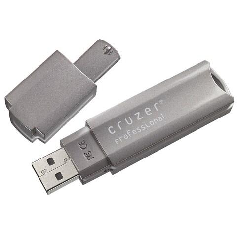 SanDisk 4GB Cruzer Professional USB Flash Drive